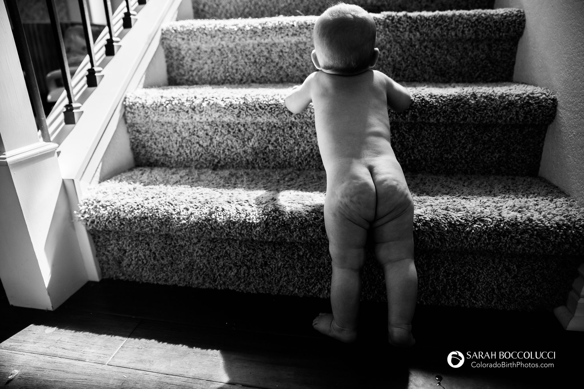 Longmont_Colorado_Baby_Photographer_Crawling_Up_Stairs
