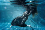 Denver, Colorado Underwater maternity photography, Lace dress